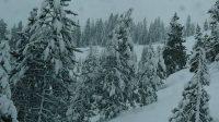beautiful snow scene2