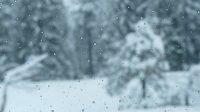 beautiful snow scene3