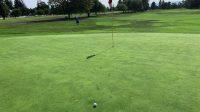 #11 hole green