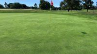 #14 hole green