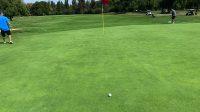 #2 hole green