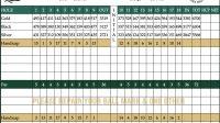 SJ muni score card