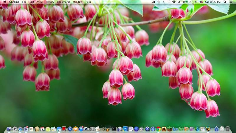 Mavericks 10.9.5 Finder and Desktop Icons Flashing Problem