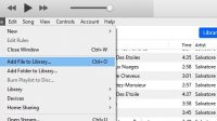 Add single song to iTunes